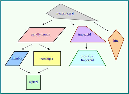 how to tell what type of quadrilateral